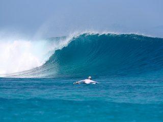 wave guide, telo islands, Sumatra, surf spots Sumatra, resort latitude zero, latitude zero, rlz, Nias, mangalui, nomad, charter boat
