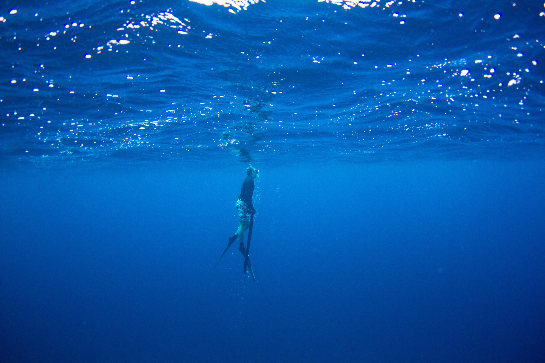 sumatra, telo islands, spear fishing, rlz, latitude zero, surf resort, mangalui