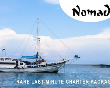 Last Minute Nomad Charter Packages  Resort Latitude Zero