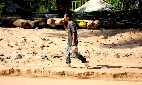 resort, Sumatra, telo islands, indonesia, surf report, latitude zero