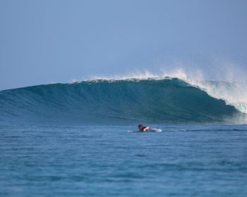 surf resort, Indonesia, Sumatra, swell, waves, Telo Islands, tropical