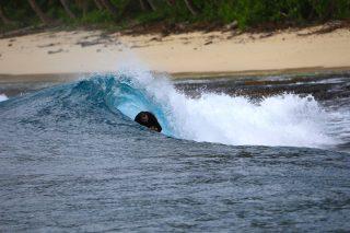 resort, surfing, Telo Islands, Sumatra, Indonesia, boutique resort